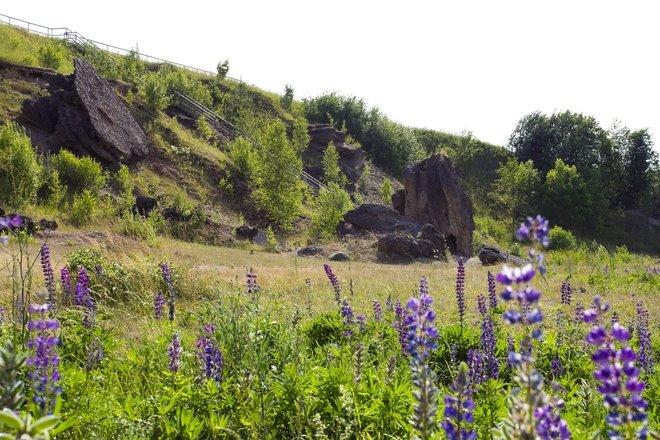 Sculptures de pierre du conglomérat de Šeimyniškiai