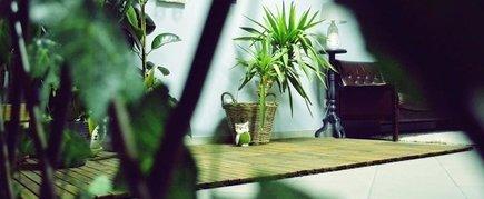 """Viesību un atpūtas zona """"Terrace Green"""""""